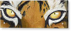 Tigers Eye Acrylic Print by Laurie Bath