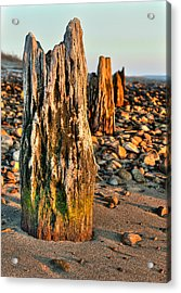 Time Stands Still Acrylic Print by Andrew Crispi