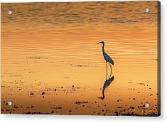 Time To Reflect Acrylic Print by Marvin Spates
