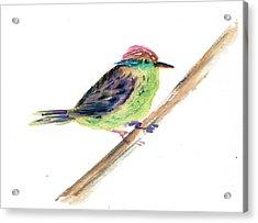 Tink Tinky Acrylic Print by Astrid Beyleveld
