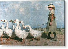 To Pastures New Acrylic Print by James Guthrie