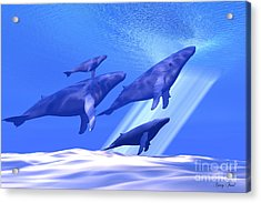 Together Acrylic Print by Corey Ford