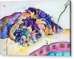 Tonka Acrylic Print by Pat Saunders-White