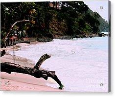 Tortola Bvi Acrylic Print by Tom Prendergast