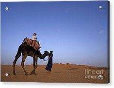 Touareg Man Leading Boy Riding Camel In Sahara Desert Acrylic Print by Sami Sarkis