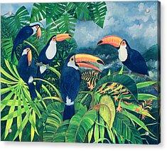Toucan Talk Acrylic Print by Lisa Graa Jensen