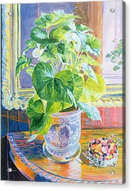 Towards The Light  Acrylic Print by William Ireland