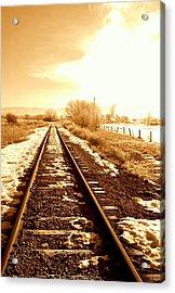 Tracks Acrylic Print by Caroline Clark
