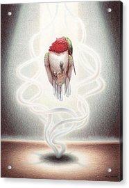 Transcendent Flight Acrylic Print by Amy S Turner