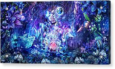 Transcension Acrylic Print by Cameron Gray