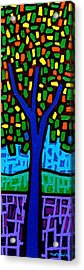 Tree Of Colour Acrylic Print by John  Nolan