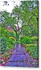 Tree Of Life At St. Luke In The Field Church Acrylic Print by Randy Aveille