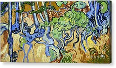Tree Roots Acrylic Print by Van Gogh