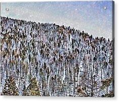 Treeart Acrylic Print by Susan Kinney