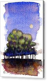 Trees At Moon Rise Acrylic Print by John D Benson
