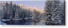 Trees Covered With Snow, Policemans Acrylic Print by Panoramic Images
