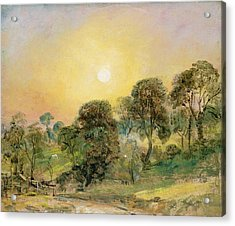 Trees On Hampstead Heath At Sunset Acrylic Print by John Constable