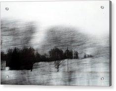 Treescape 2 Acrylic Print by David Hickey