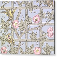 Trellis   Antique Wallpaper Design Acrylic Print by William Morris