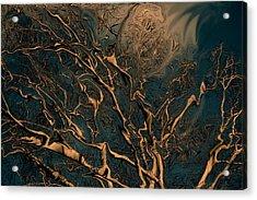 Trippy Tree Acrylic Print by Linda Sannuti