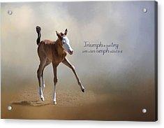 Triumph Acrylic Print by Robin-lee Vieira