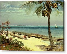 Tropical Coast Acrylic Print by Albert Bierstadt