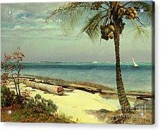 Tropical Coast Acrylic Print by Albert Bierstadt