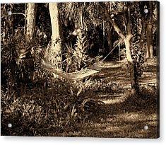 Tropical Hammock Acrylic Print by Susanne Van Hulst