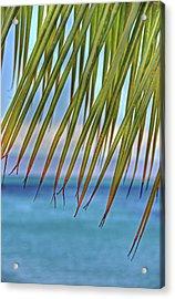 Tropical Paradise Acrylic Print by Kelly Wade
