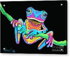 Tropical Rainbow Frog On A Vine Acrylic Print by Nick Gustafson