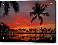 Tropical Sunset Reflections Acrylic Print by Jennifer Crites