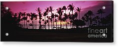 Tropical Sunset With Magenta Sky Acrylic Print by Bill Schildge