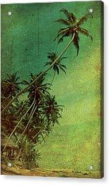 Tropical Vestige Acrylic Print by Andrew Paranavitana