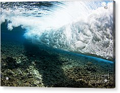 Tropical Wave Curl Acrylic Print by Dave Fleetham - Printscapes