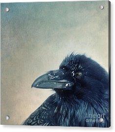 Try To Listen Acrylic Print by Priska Wettstein