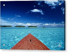 Tuamotu Islands, Raiatea Acrylic Print by William Waterfall - Printscapes