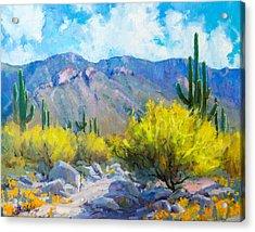 Tucson Mountains Acrylic Print by Becky Joy