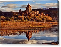 Tufa Mono Lake California Acrylic Print by Garry Gay
