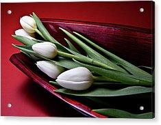 Tulips II Acrylic Print by Tom Mc Nemar