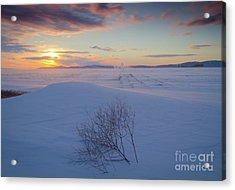 Tumble In The Snow Acrylic Print by Idaho Scenic Images Linda Lantzy