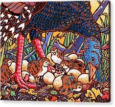 Turkeys Acrylic Print by Nadi Spencer