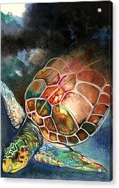 Turtle Acrylic Print by Anthony Burks Sr