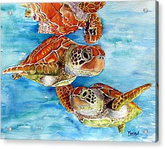 Turtle Crossing Acrylic Print by Maria Barry