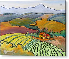 Tuscan Vineyard Acrylic Print by Mohamed Hirji