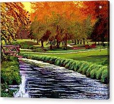 Twilight Golf Acrylic Print by David Lloyd Glover
