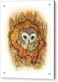 Twilight Owl Acrylic Print by Donna Genovese