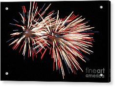 Twin Burst Acrylic Print by Norman  Andrus