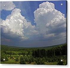 Twin Peaks Acrylic Print by Jerry LoFaro