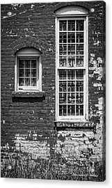 Twins - Bw Acrylic Print by Christopher Holmes