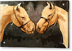 Two Horse Acrylic Print by Shannon Rains